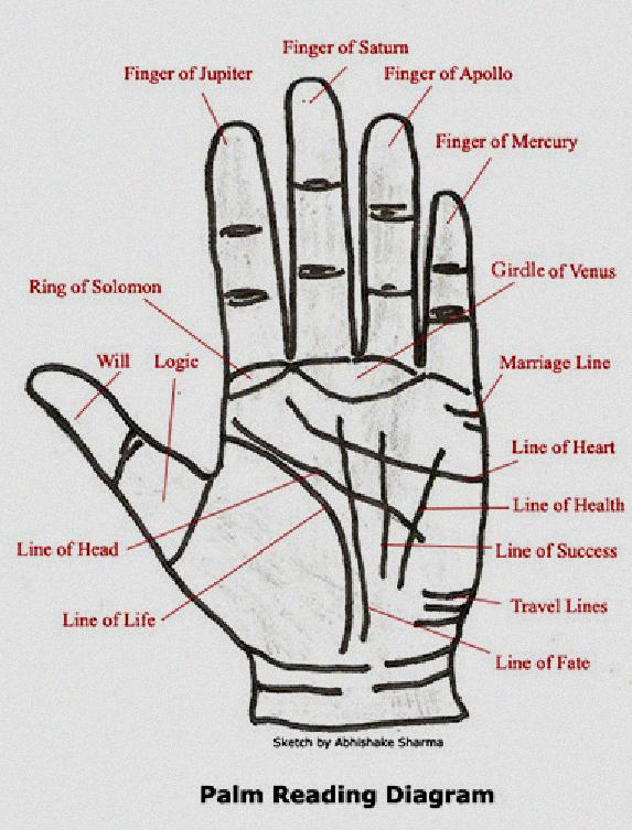 Numerology 6 Marriage Life - Numerology Number 6 Marriage Life